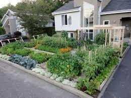 backyard dazzling backyard garden for backyard vegetable garden