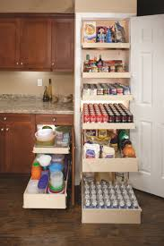 Custom Kitchen Pantry Cabinet 40 Best Pantry Organization Images On Pinterest Pantry Storage