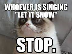 Grumpy Cat Snow Meme - lolcats things i like pinterest pink yellow and craft