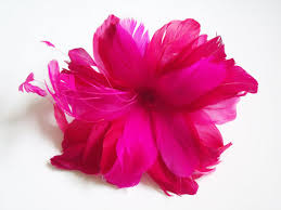 feather flower fuschia flower cliparts free clip free clip