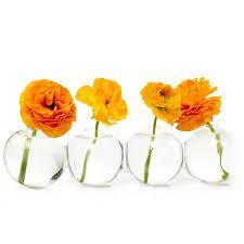 Bud Vase Arrangements Vases Amazon Com Home Decor