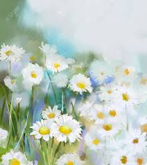 Soft Blue Color Oil Painting Daisy Flowers In Field Hand Paint White Flowers