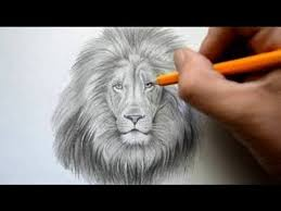 the 25 best lion face drawing ideas on pinterest lion tattoo