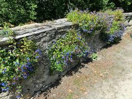 30 best tuin muurtjes images on pinterest garden ideas garden