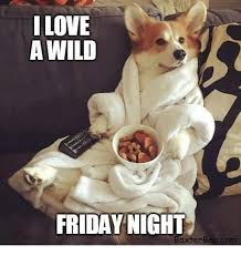 Friday Night Meme - ilove a wild friday night axterbooco dank meme on me me