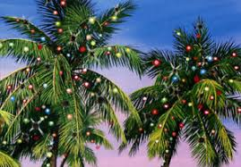 palm tree christmas tree lights palm tree lights red farm studios box of 18 warm weather christmas