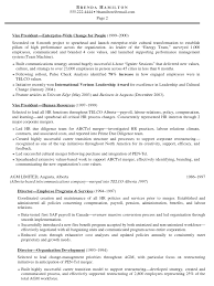 hr resume cover letter vp e hr resume brenda hamilton human