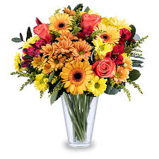 flowers roses bright orange roses and gerbera orange flowers floraqueen