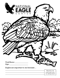 shining bald eagle coloring pages 9 free printable bald eagle
