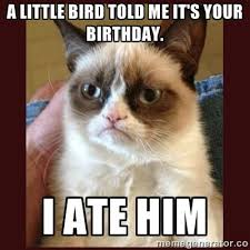 Grumpy Cat Meme Happy Birthday - best happy birthday cat meme