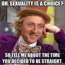 Bi Sexual Memes - kissbisexual com kiss bisexual is a romantic thing have you