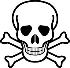 pictures skull and crossbones clip vector