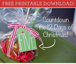 61 best 12 days of christmas images on pinterest christmas gift