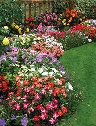 Summer Flower Garden Ideas - 151 best gardening ideas images on pinterest gardening plants