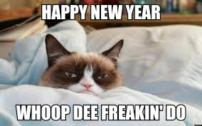 Happy New Year Meme 2014 - it s a new year voyager blog by moonvoyage
