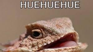 Huehuehue Meme - eliza effect tumblr