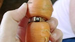 gorilla radio wedding band woman finds lost diamond ring on carrot in garden news