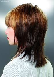 shaggy hairstyles longer in the front medium hairstyles short back long front