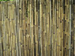 fence bamboo fencing home depot bamboo fence home depot