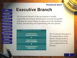 executive branch the executive branch