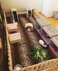 What Is The Best Bed Linen - best 25 hedgehog bedding ideas on pinterest hedgehog cage