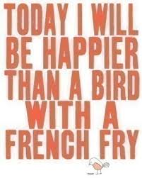 bird fry happy message quote text image 2372 on
