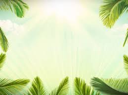 palm branches for palm sunday palm sunday background loop hyper pixels media worshiphouse media