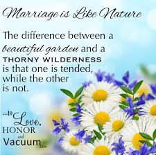 wedding quotes quote garden 42 best beautiful marriage quotes images on marriage