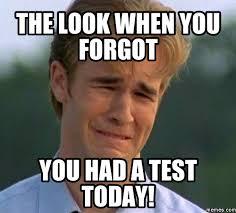 Meme Test - review day davies domain