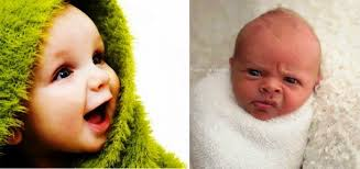 Baby Photoshoot The Funniest Baby Photoshoot Fails