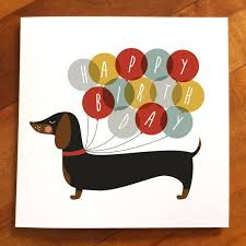 happy birthday book the 25 best happy birthday dog ideas on