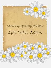 Get Well Soon Flowers White Daisy Flower Get Well Card Birthday U0026 Greeting Cards By Davia