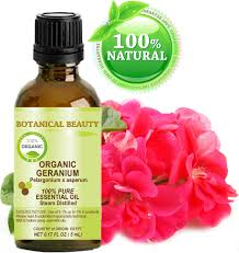 amazon com organic geranium egyptian essential oil 100 pure