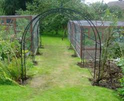 traditional iron pergolas rose and fruit tunnels arbor adore