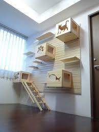 best 25 cat room ideas on pinterest cat house diy diy cat