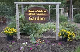 Community Gardens In Urban Areas Garden Partners Compostnow