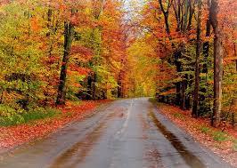33 fall colors images traverse michigan