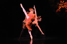 the australian ballet goes nuts in may