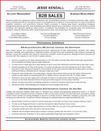 resume templates sles copy and paste resume templates awesome professional sales resume
