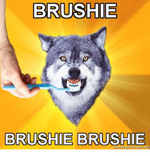 Advice Dog Memes - brushie brushie brushie meger or net advice dog meme on me me