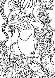 114 dessins de coloriage oiseau à imprimer