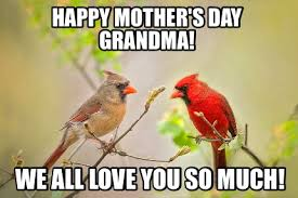 Love You So Much Meme - meme maker happy mothers day grandma we all love you so much