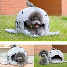 halloween contact lenses amazon amazon com grey shark bed for small cat dog cave bed with