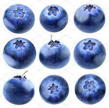 Dark Blue Meaning by Collection Of Blueberries Isolated Food U0026 Drink Photos