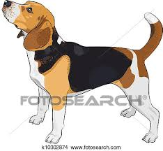 clipart of vector sketch dog beagle breed k10302874 search clip