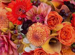 same day flower delivery nyc same day flower delivery nyc new new york florist garcinia