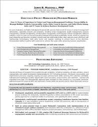 Examples Of Summary Statements For Resumes Summary Statement On Resume Resume For Your Job Application