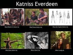 image result for hunger games memes the hunger games pinterest