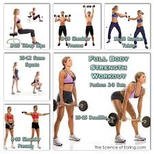 Full Body Dumbbell Workout No Bench Full Body Workouts