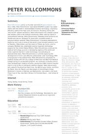 Ceo Resume Sample by Founder Ceo Resume Samples Visualcv Resume Samples Database